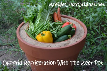 Off-grid Refrigeration With The Zeer Pot