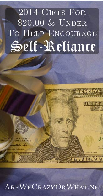 2014 Gifts For $20 & Under To Help Encourage Self-Reliance~AreWeCrazyOrWhat.net