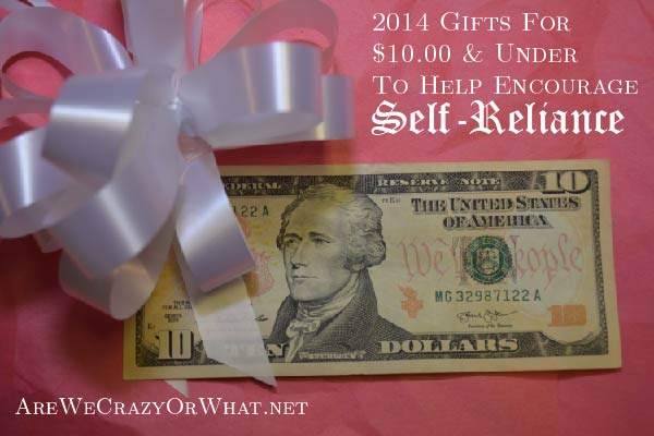 2014 Gifts For $10.00 & Under To Help Encourage Self-Reliance~AreWeCrazyOrWhat.net