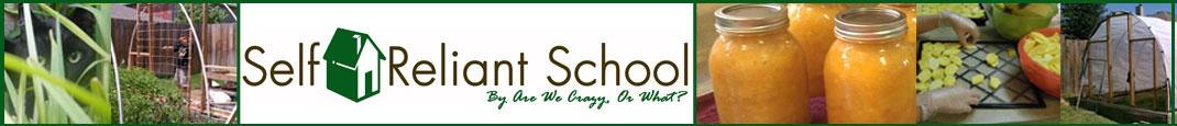 Self Reliant School