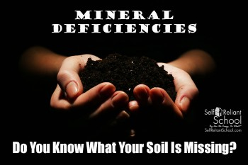 Mineral Deficiencies--Do You Know What Your Soil Is Missing?