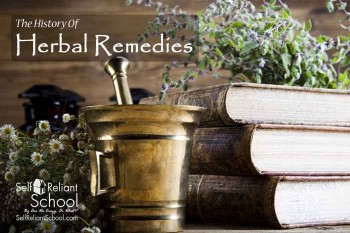 The History Of Herbal Medicine and Remedies