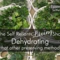 Dehydrating (That Other Preserving Method)--Self Reliant Living #003