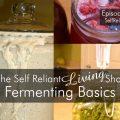 Fermenting Basics
