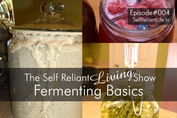 Fermenting Basics--Self Reliant Living #004