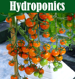 Hydroponics Resources