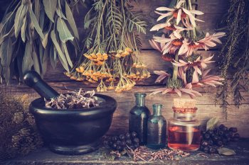 Natural Healing Articles