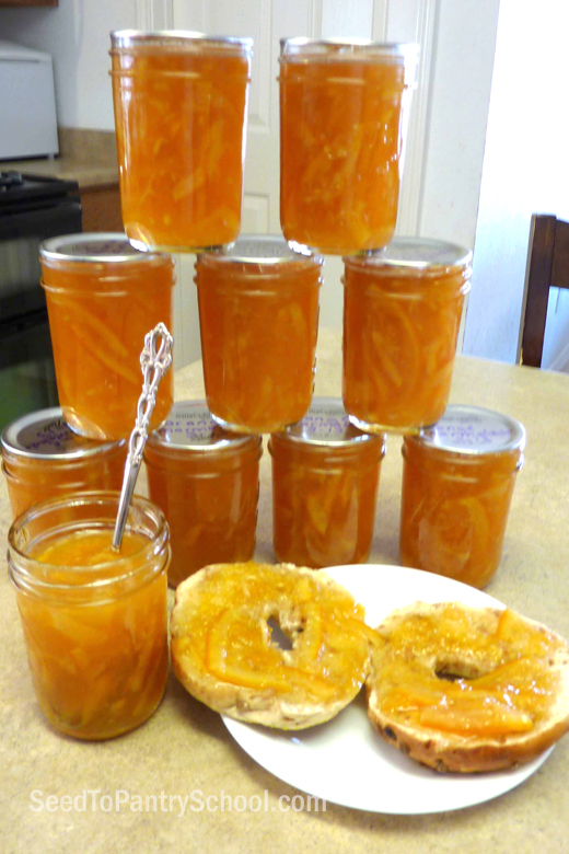 how-to-make-and-can-marmalade