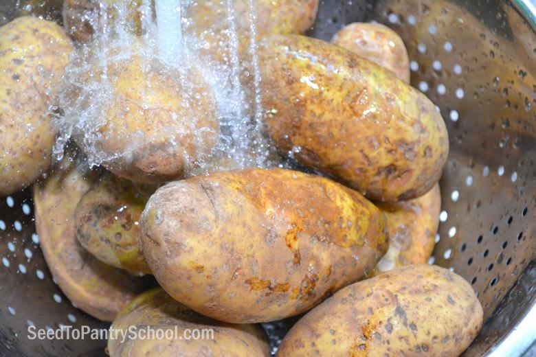 dehydrating-potatoes-plus-secret-revealed