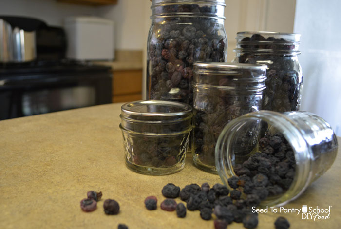 how-to-dehydrate-blueberries
