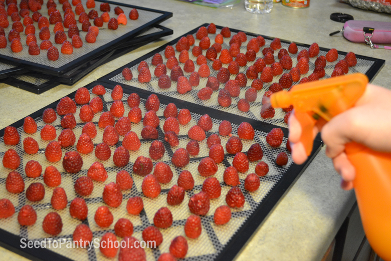 how-to-dehydrate-raspberries