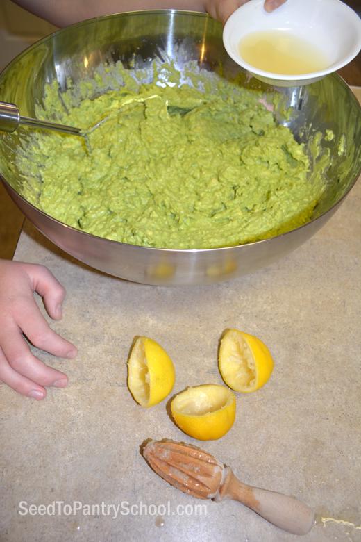 freeze-avocados-make-guacamole-spreads
