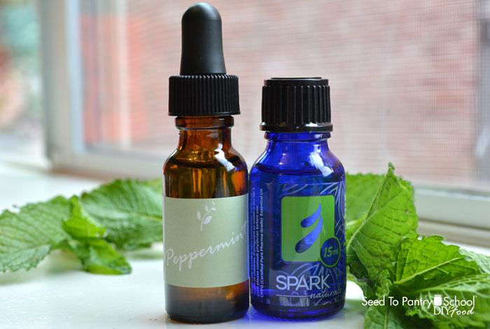 spot-light-essential-oils-peppermint-oil