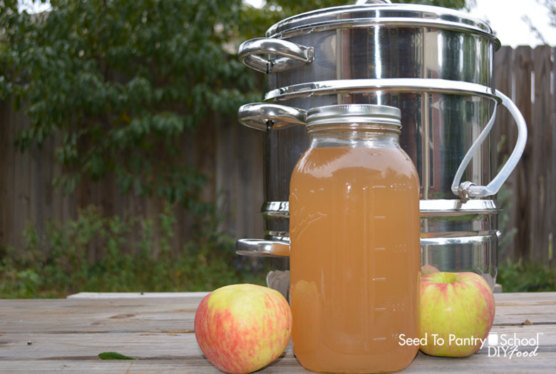 make-apple-juice-steam-juicer
