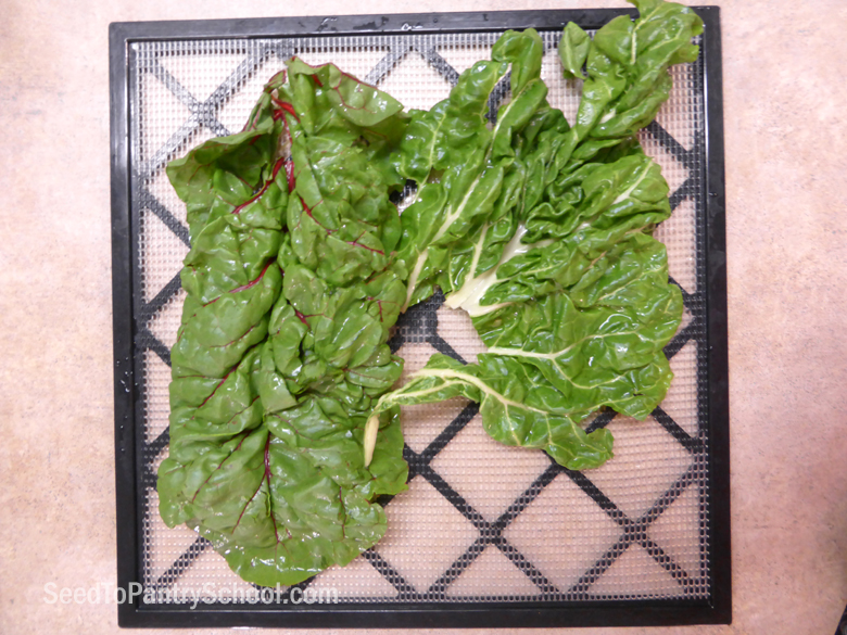 dehydrate-greens-plus-making-green-powder