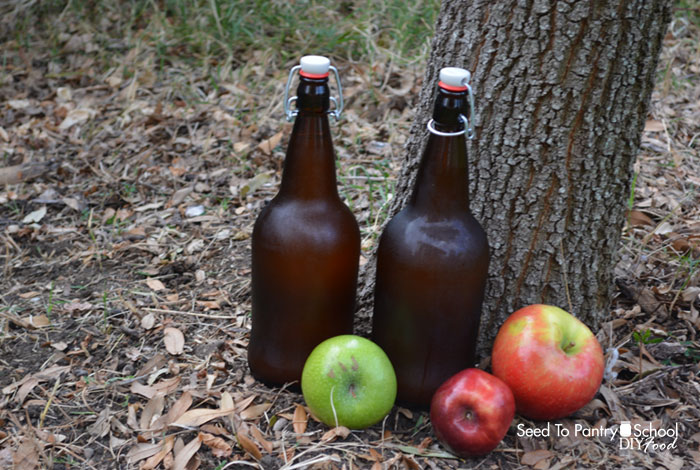make-hard-apple-cider-easy-way