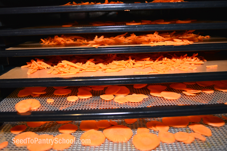 dehydrate-carrots-plus-word-blanching