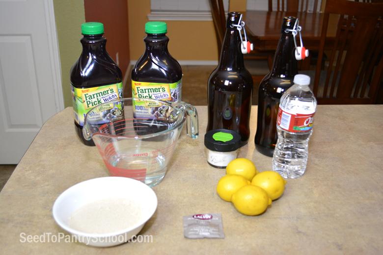 quick-easy-homemade-grape-soda