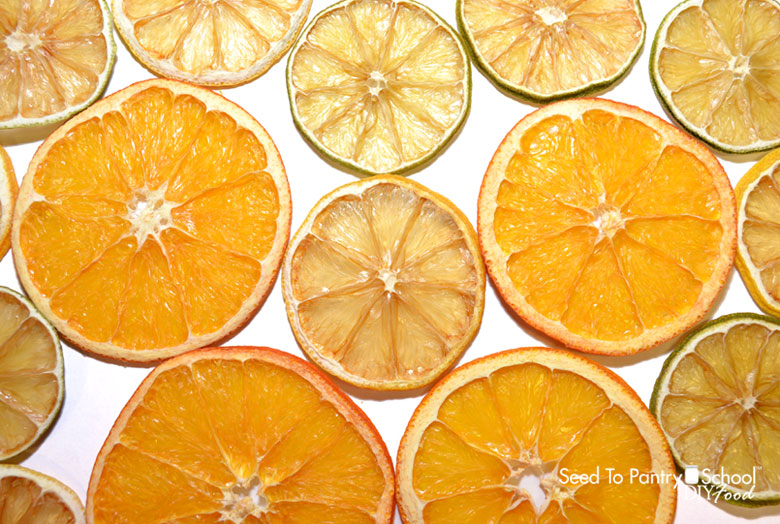 how-to-dehydrate-citrus-slices