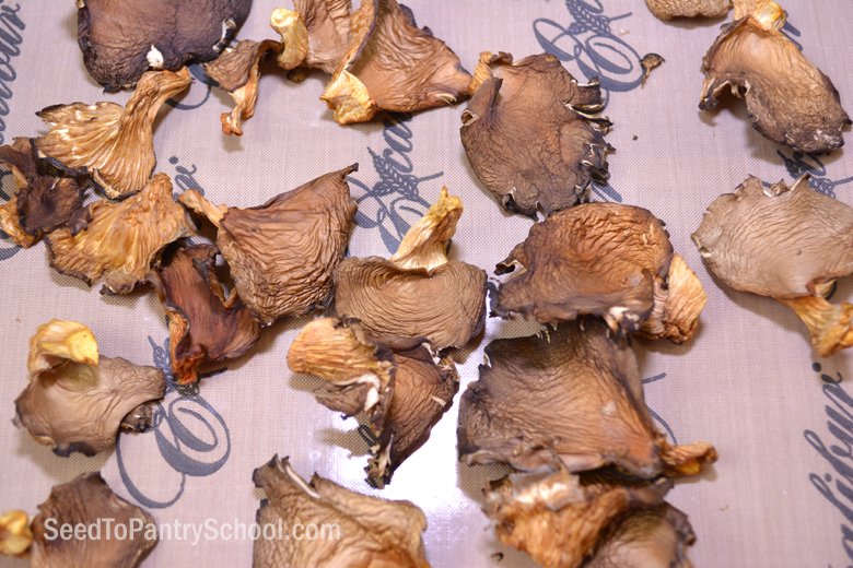 how-to-dehydrate-mushrooms