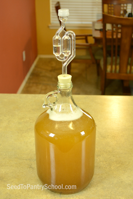 how-to-make-quick-mead