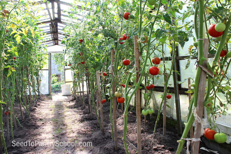 5-ways-to-extend-your-growing-season