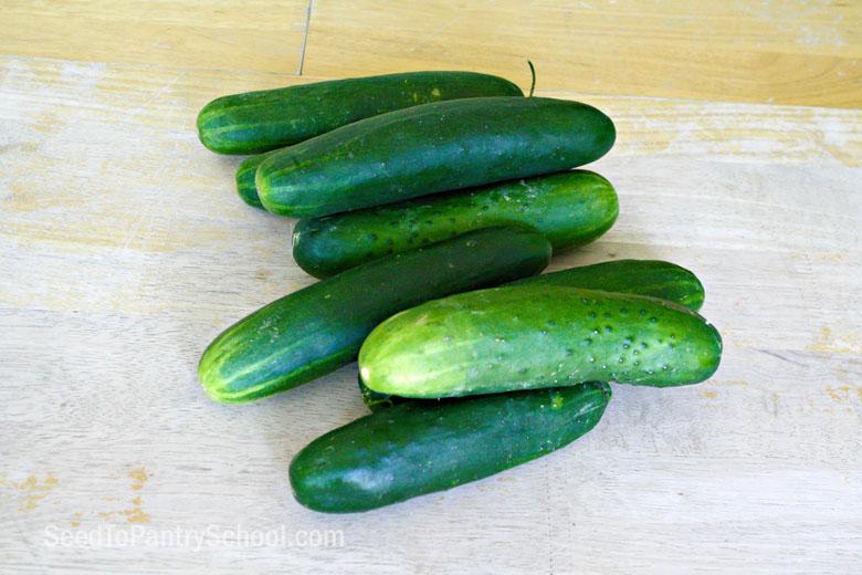 make-can-cucumber-pickles