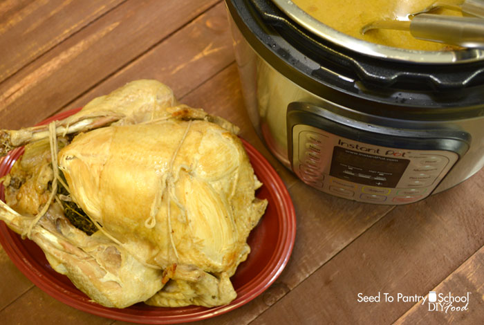 instant-pot-whole-turkey