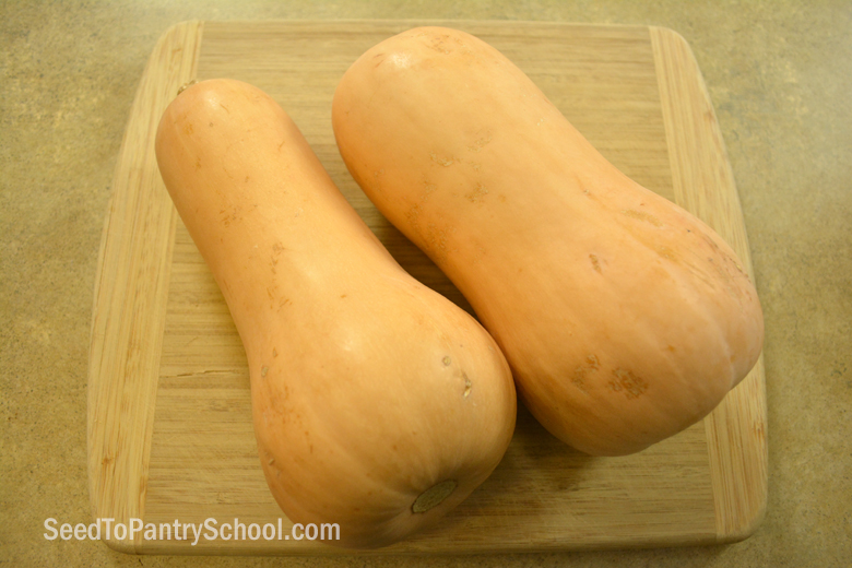 make-butternut-squash-soup-instant-pot
