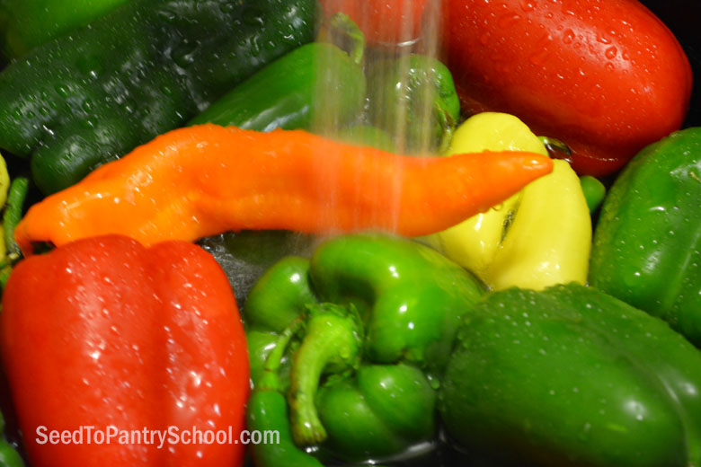 dehydrate-peppers-plus-making-pepper-powder
