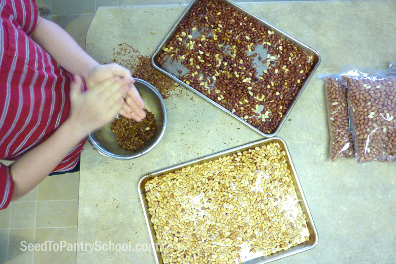 how-to-roast-skin-and-store-peanuts