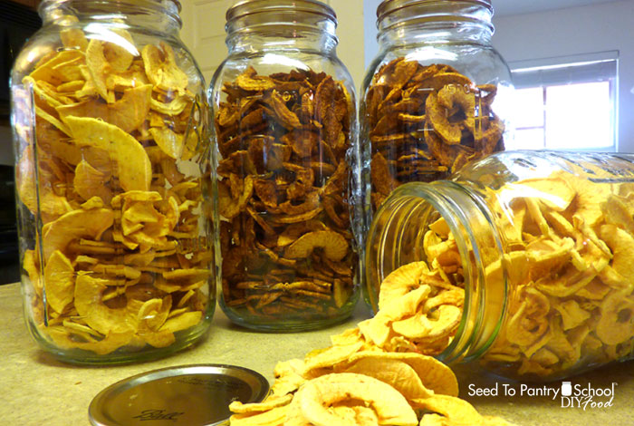 how-to-make-dehydrated-cinnamon-apples