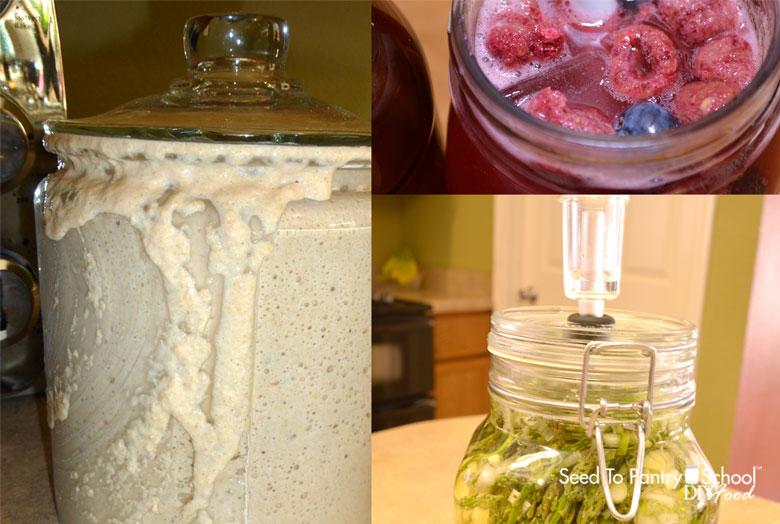 fermenting-basics