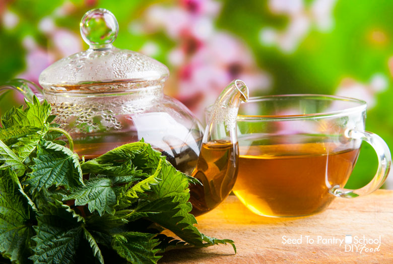 8-natural-remedies-relieve-allergies
