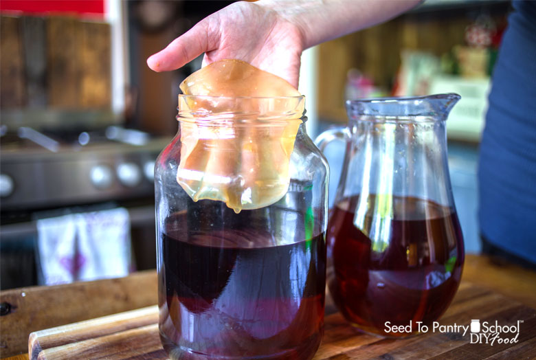 make-kombucha-with-or-without-scoby