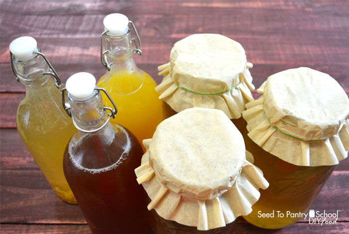 make-water-kefir
