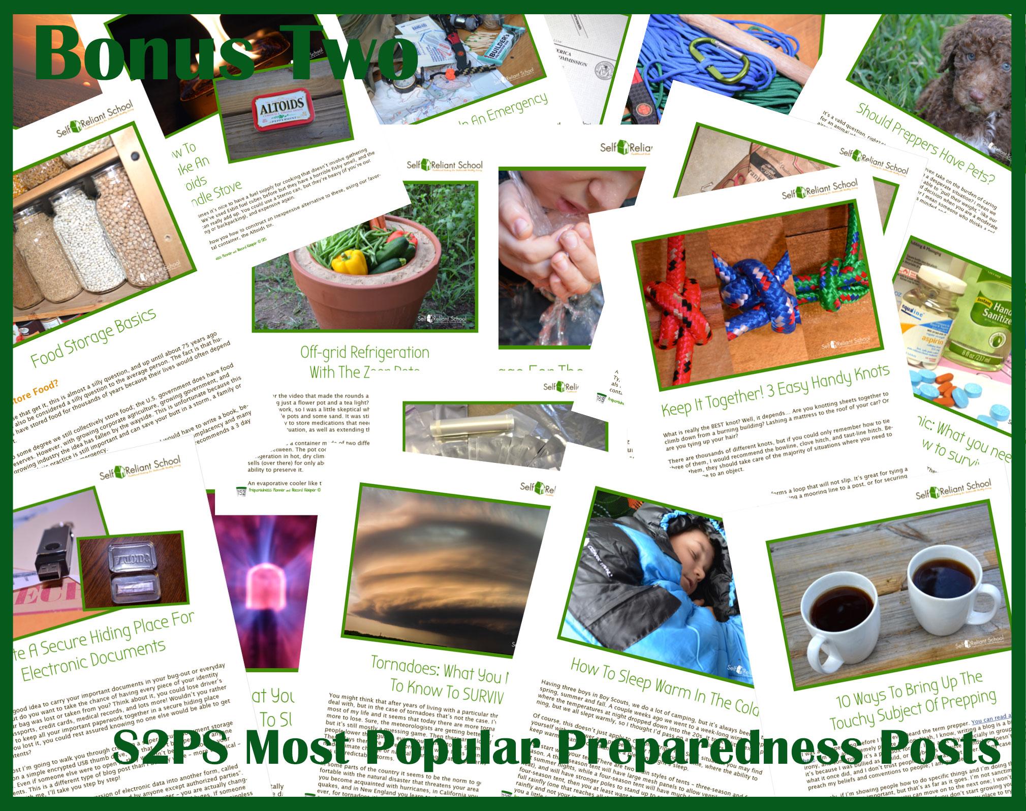 Bonus preparedness posts